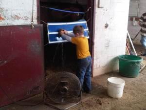 Calvin scrubbing stall webbing