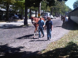walking to the paddock, Belmont Park