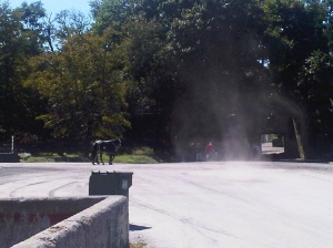 Dust devil at Belmont Park