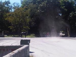 Dust devil at Belmont Park