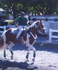 track pony, Belmont Park