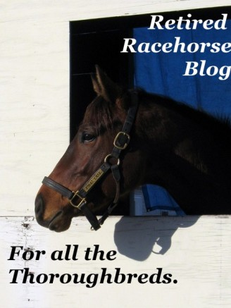 retired racehorse blog badge