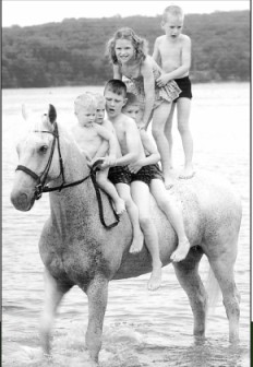 Snowman, gray horse, swimming with children