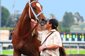 chestnut Thoroughbred, racehorse