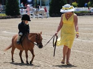 pony on leadline, devon horse show