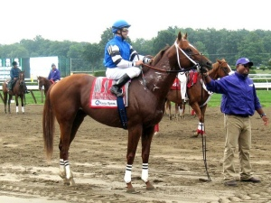 Whitney Stakes, Thoroughbred, Saratoga