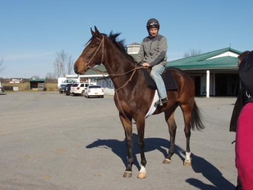 Colt at racetrack