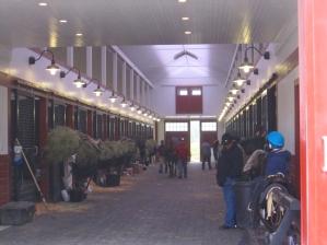 Sagamore Farm's Training Barn