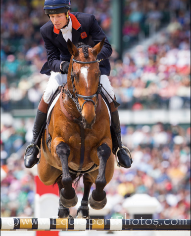 Parklane Hawk and William Fox-Pitt, Thoroughbred, Rolex 2012 winner
