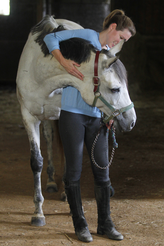 grey thoroughbred hug