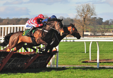 Hurdle horse racing