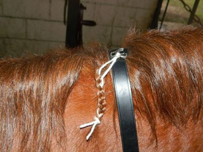 Neck strap braided into horse's mane