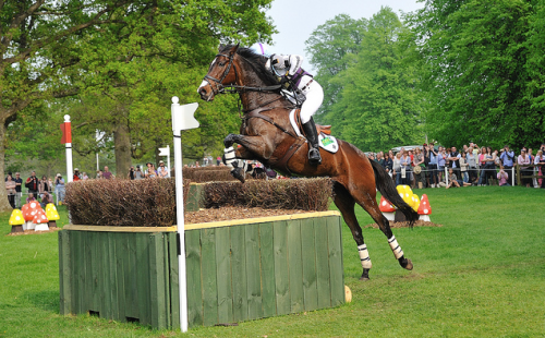Two Thyme and Ruth Edge Badminton 2011